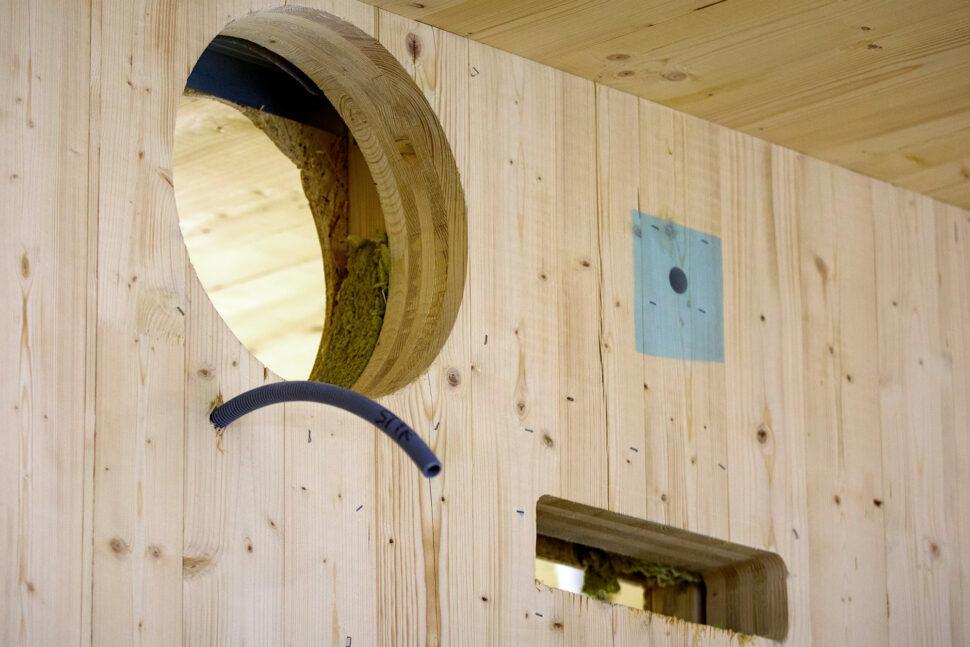 En stor del av förskolan är byggd i massivt limträ. Foto: Sören Håkanlind